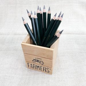 faber-castell 9000 JUMBO 6b pencil