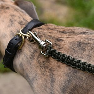 FARMERS' Dog lead